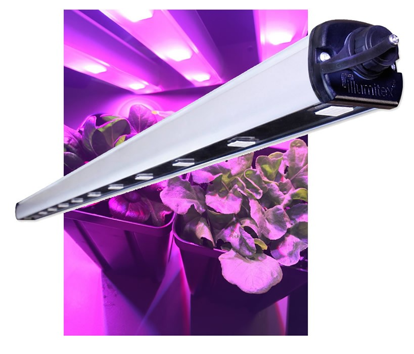 Illumitex Eclipse Gen2 N Bar Led Grow Light Grandio Greenhouses